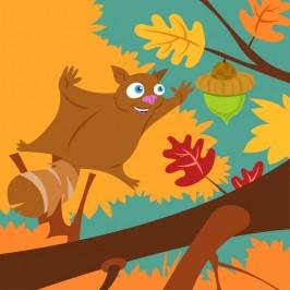 Flying Squirrel IN COLOR